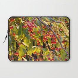 Bright red berries on a tree Laptop Sleeve