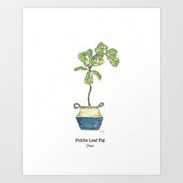 Fiddle Leaf Fig Art Print