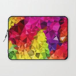 Rainbow Poly Low Laptop Sleeve