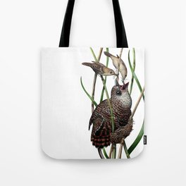 Baby Bird I Tote Bag