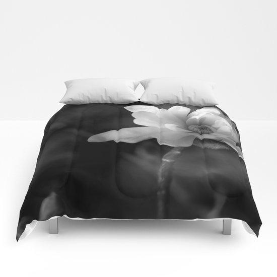 Magnolia Stellata  Comforters