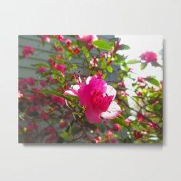 The Frail Flower Metal Print