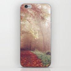 Misty Autumn Day iPhone & iPod Skin