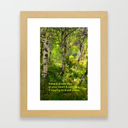 Aspens and Chinese Proverb Framed Art Print