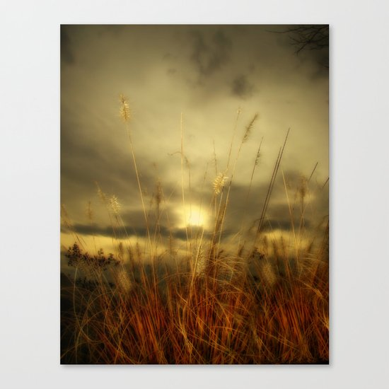 Exit Of Summer Canvas Print