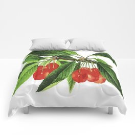 Red Cherries Vector on White Background Comforters