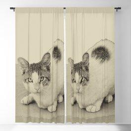 Meow Blackout Curtain
