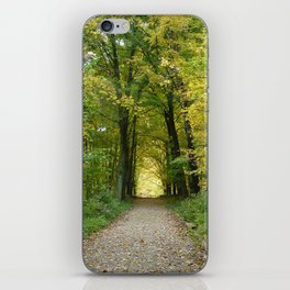 The Road Not Taken iPhone Skin