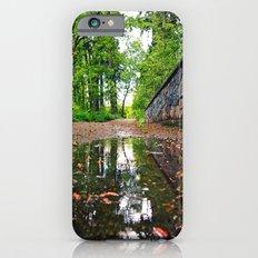Northwest beauty iPhone 6s Slim Case