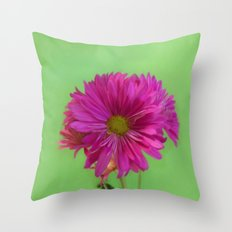 Aesthetic Exit Throw Pillow