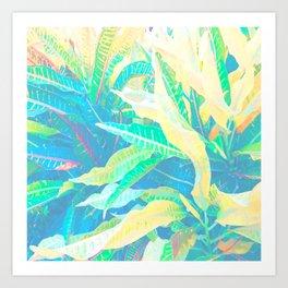Tropical Croton Leaves 3 Art Print