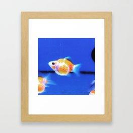 Hip Collection Framed Art Print