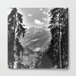 forest panorama kaunertal alps tyrol austria europe black white Metal Print