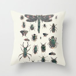 Collection of Insects Throw Pillow