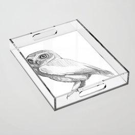 Owl Acrylic Tray