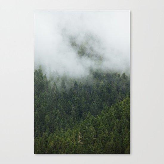 Tree Fog Canvas Print