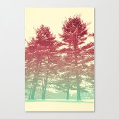 Winter's Voice Canvas Print