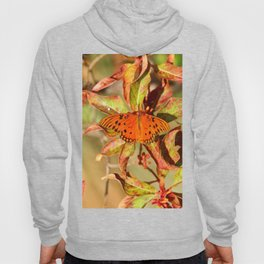 Butterfly In The Glades - Gulf Fritillary Hoody