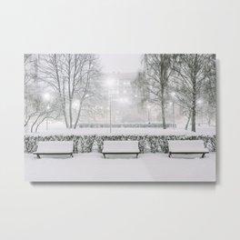 Winter Park Metal Print