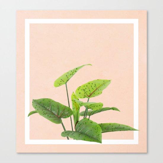 Botanical Art #society6 #decor #lifestyle #buyart Canvas Print