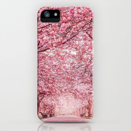 Cherry Blossom in Greenwich Park iPhone Case
