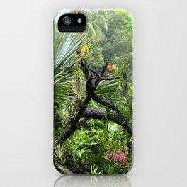 Singapore Botanical Garden 2 iPhone Case