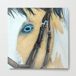 Through His Eyes Metal Print