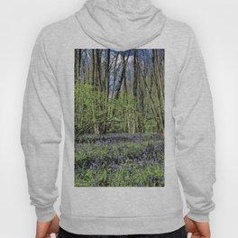 Everdon Stubbs Wood Bluebells Hoody