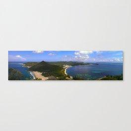 cove Canvas Print