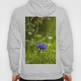 Cornflower Hoody
