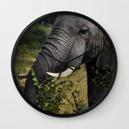Elephant Early Morning Snack Wall Clock