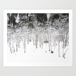 Snow Tales #2 Art Print