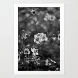 Petites Fleurs Art Print