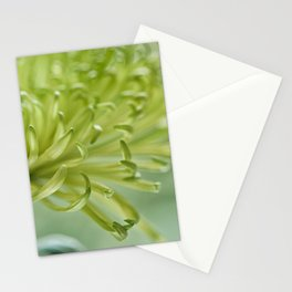 tangible Stationery Cards