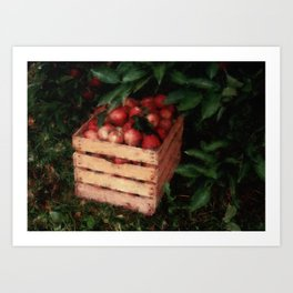 Apple Crate Art Print