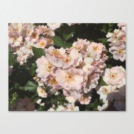 Summer Fresh Flowers Canvas Print