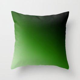 2 Ombre Throw Pillow