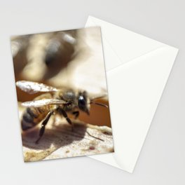 2 Bee or Not 2 Bee Stationery Cards
