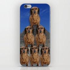 Emulate iPhone & iPod Skin