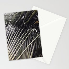 Natural Background 75 Stationery Cards