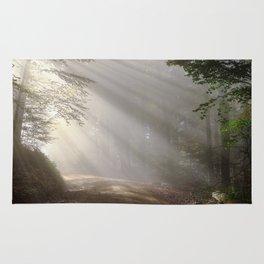 sunlight Rug