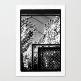 Terrace & Vines Canvas Print