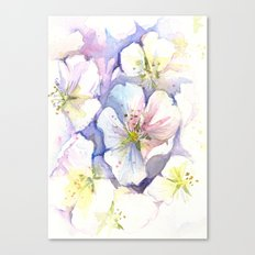 Cherry Blossoms Flowers Spring Floral Canvas Print