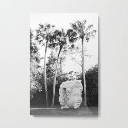 The Lone Head Metal Print