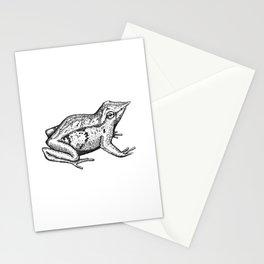 Ranita de Darwin Stationery Cards