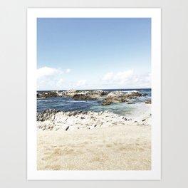 monterey california shore part one Art Print