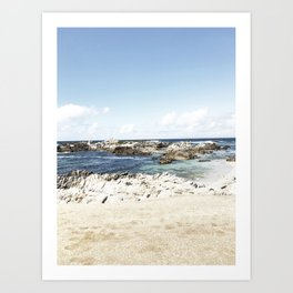 monterey california shore part one Art Print