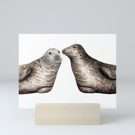 Grey seals(Halichoerus grypus) Mini Art Print