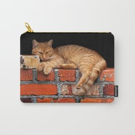 Orange Cat on Red Brick Wall Carry-All Pouch