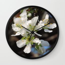 Plum Blossoms Wall Clock